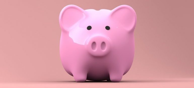 A pink piggy bank in which to save money for local movers Buffalo NY.