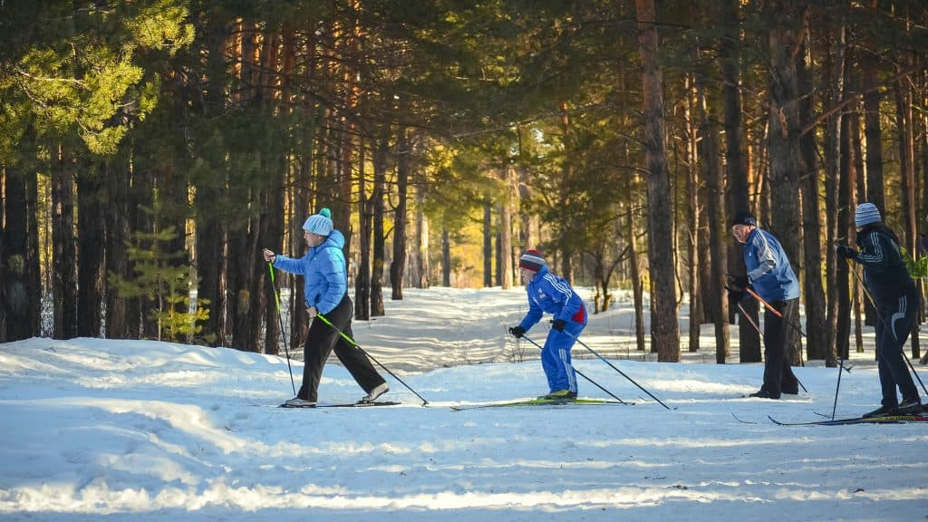 Men skiing in the woods